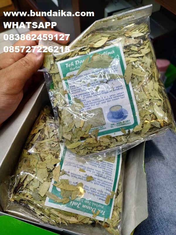 Teh Jati Cina Di Lombok Wa 082121234004 Detikforum