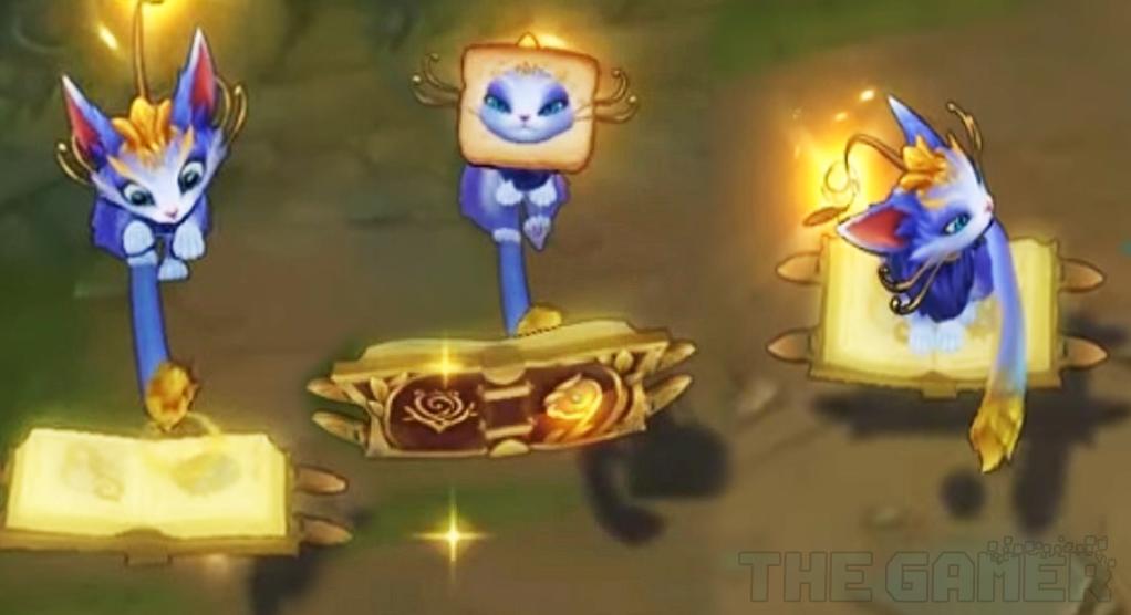 Animaciones de la campeona