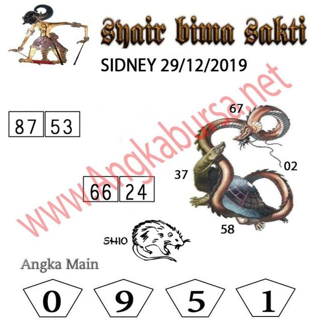 SYAIR-BIMA-SAKTI-sdy-6