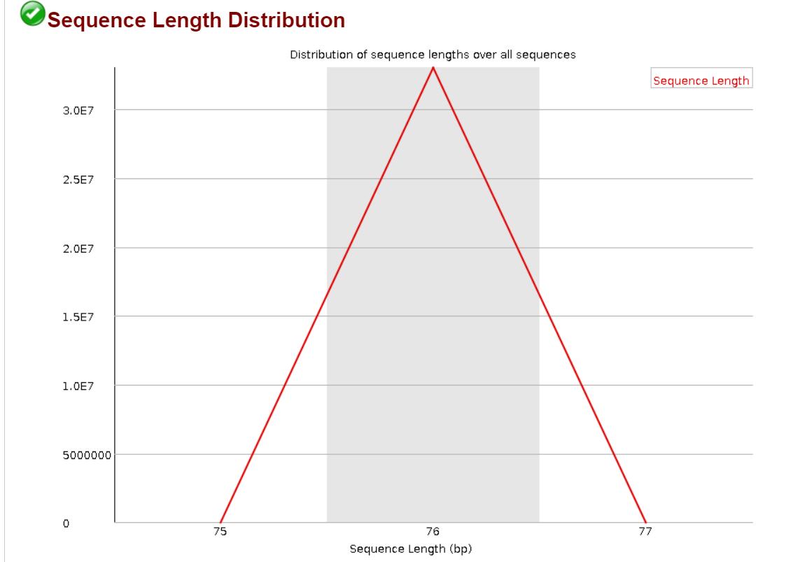 Length before cutadapt
