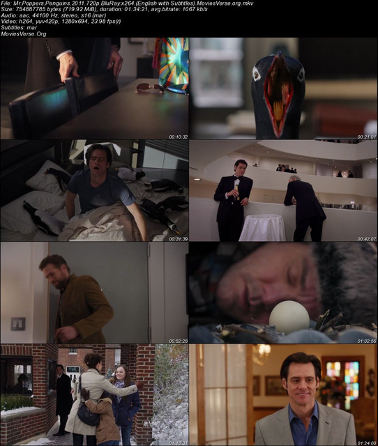 Mr-Poppers-Penguins-2011-720p-Blu-Ray-x264-English-with-Subtitles-Movies-Verse-org