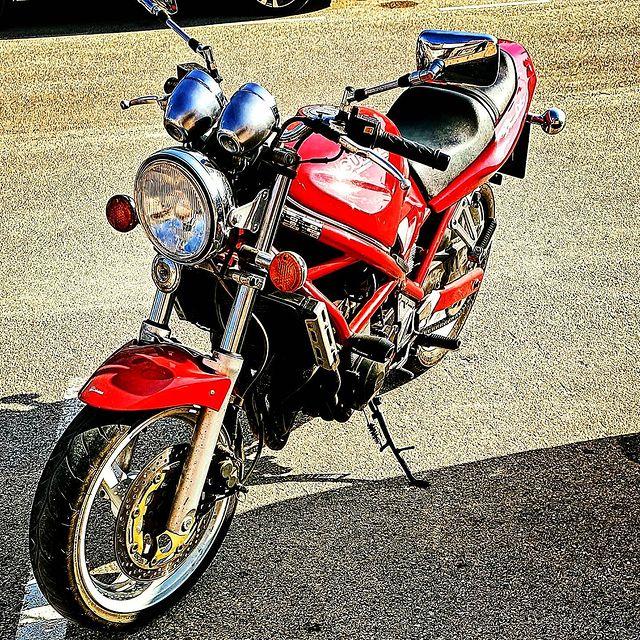 Bandit roja en Los Alcázares, la zona del Mar Menor - Página 5 192532675-472069100680395-5823999267810319046-n