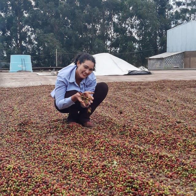 Caso de sucesso: produtora de café ganha nova ocupação em Campos Altos (MG) - SENAR MINAS