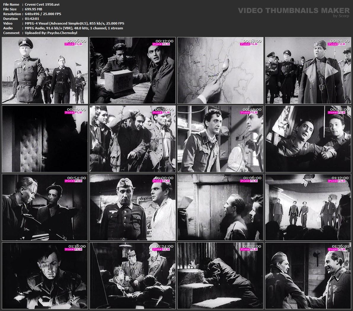 Crveni-Cvet-1950-avi.jpg
