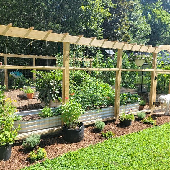 Why Are Vegetable Gardens Raised