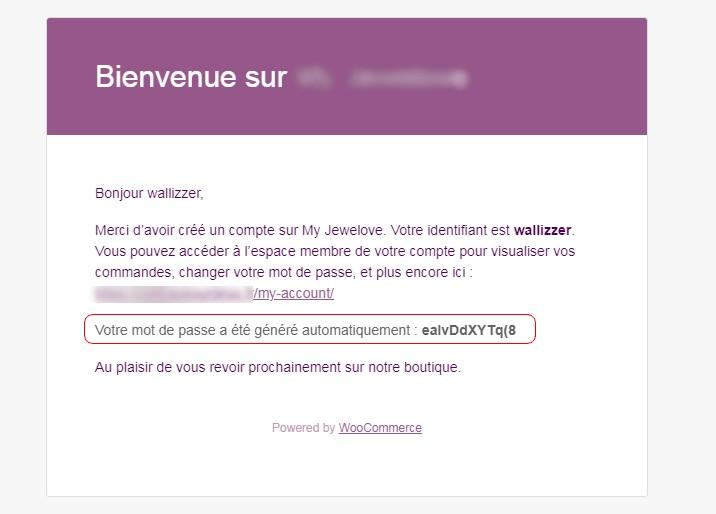 Plus de mot de passe généré dans l'email des nouveaux utilisateurs
