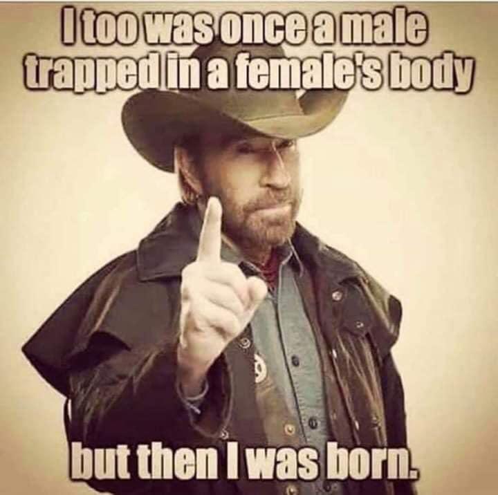 in-female-body.jpg