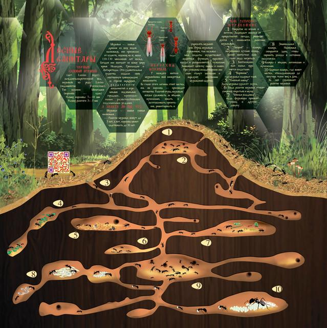 Подземные обитатели экопарка На неведомых мытищинских дорожках при Уаровском храме поселка Вешки