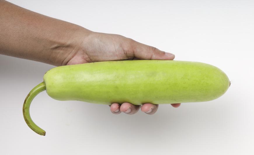 lagenaria-siceraria-hand-also-know-as-bottle-gourd-96696-972-2.jpg