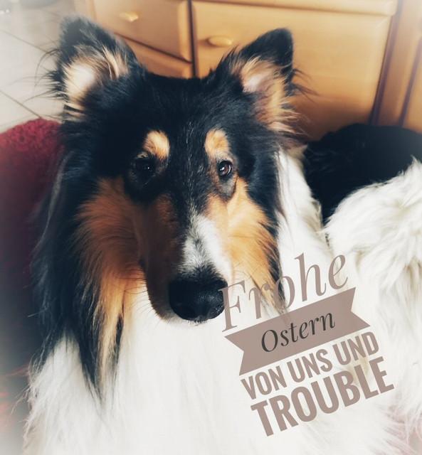 Trouble21-04-04