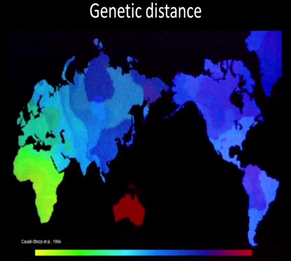 Genetic-distance.jpg