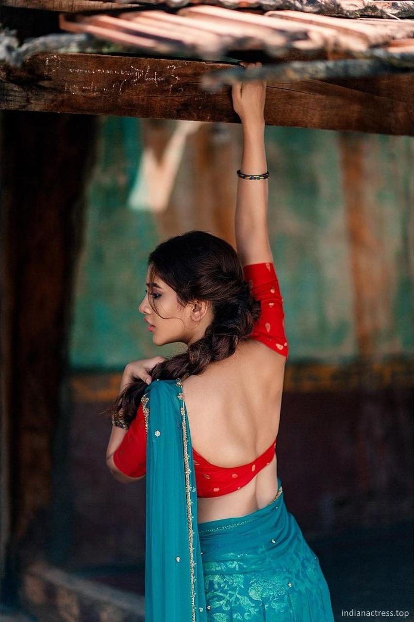 Nabha-Natesh-Latest-Hot-Photoshoot-2