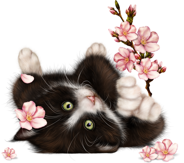 Kitty-in-Blossom-11.png