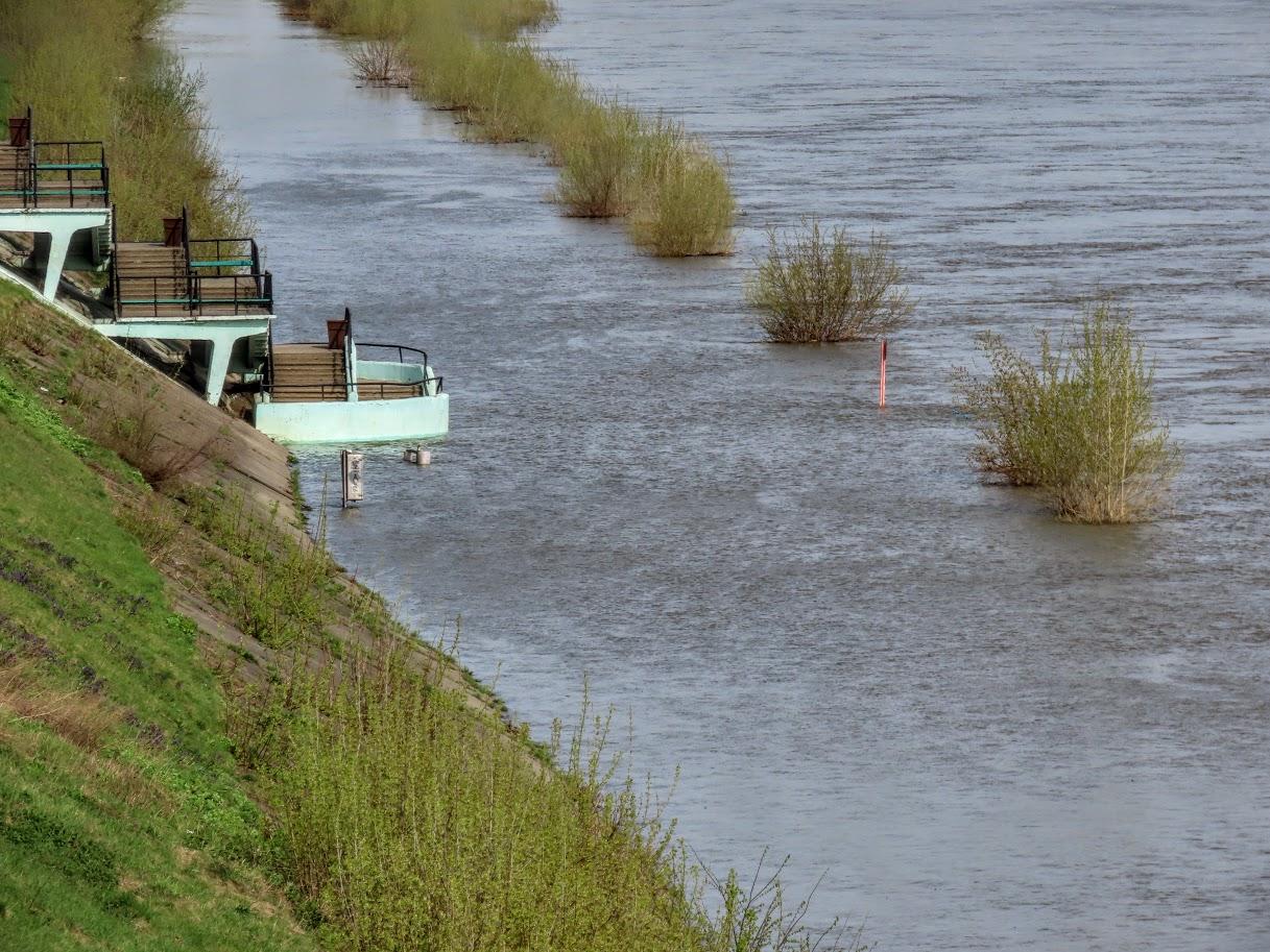 Уровень воды в Томи снова повысился IMG-7749