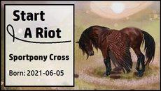 Start_A_Riot.jpg