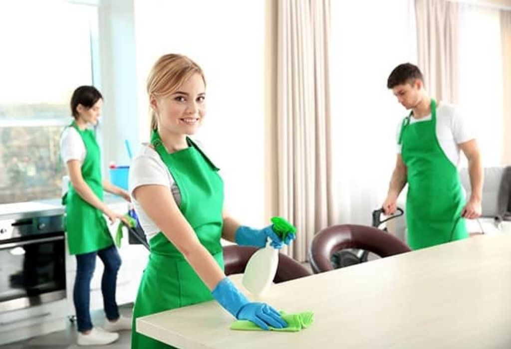5 Easy Facts About House Cleaning Explained