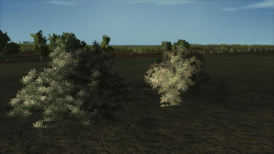 WW2-OL-Bushes-for-concealment.jpg