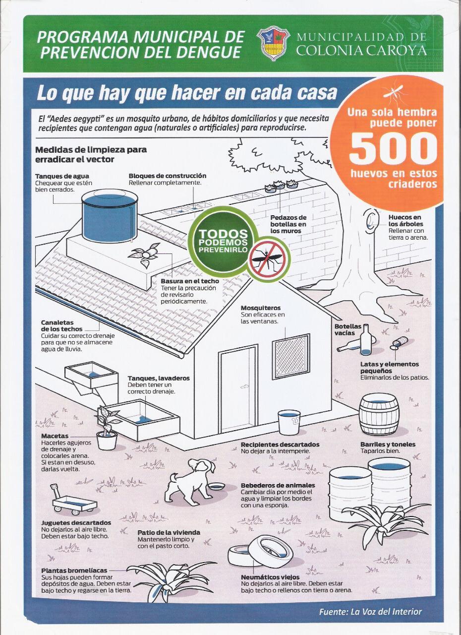 dengue-folleto2