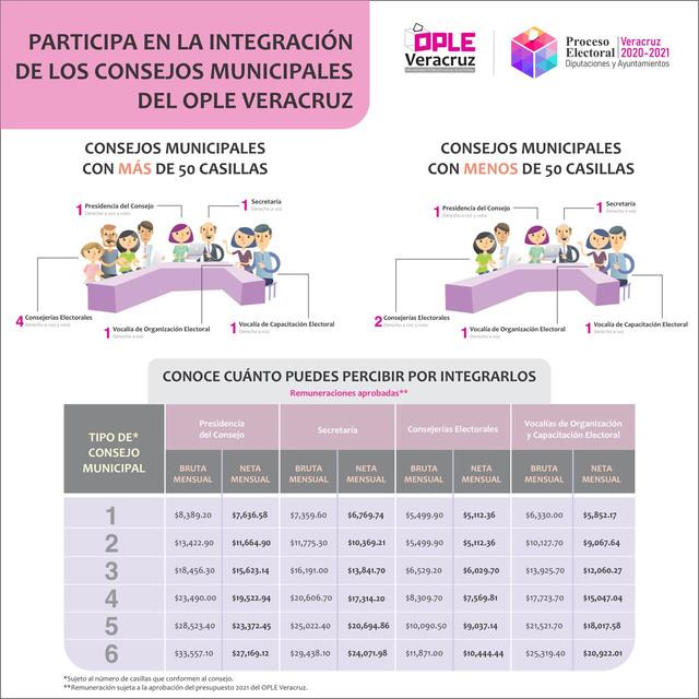 Integraci-n-consejos-municipales-1