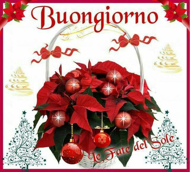 i saluti di dicembre - Pagina 2 4a3f97cbdb1c898f675b4bcd1ea10329