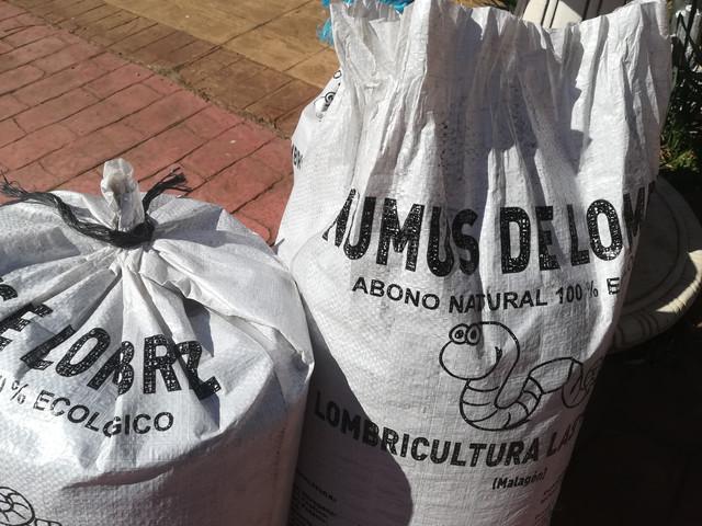 Hoy Toca Plantar Olivos Forocoches