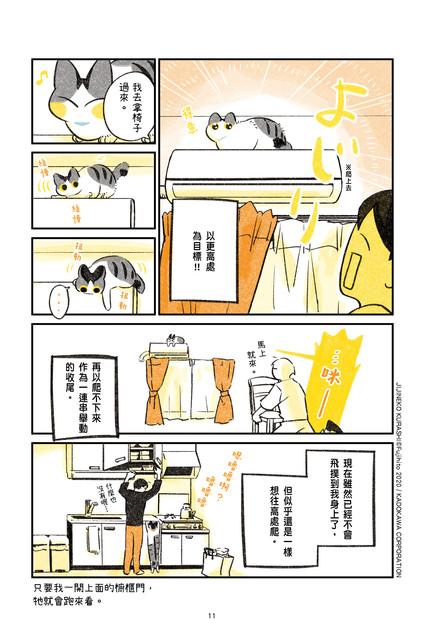 尖端提供漫畫《有貓的日常》試閱 011