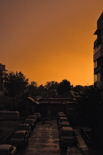 sunset yard.jpg