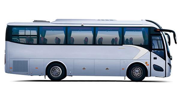 12-30-8m-seater-coach-02.jpg