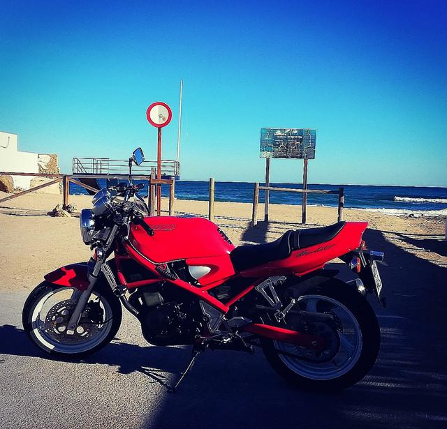 Bandit roja en Los Alcázares, la zona del Mar Menor - Página 2 IMG-20190111-122555