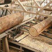 Sawmill-Head