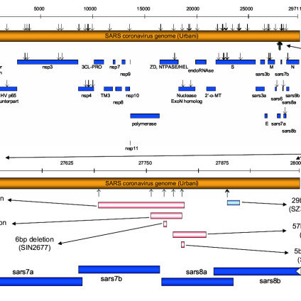 Map-of-significant-mutations-insertions-