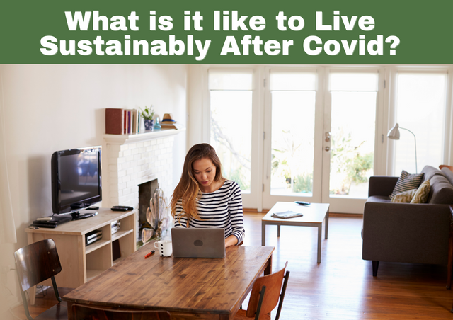 What-is-it-like-to-Live-Sustainably-After-Covid