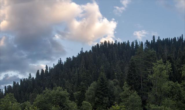 Untitled-Panorama22.jpg