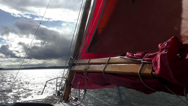 Moray-4-Still022