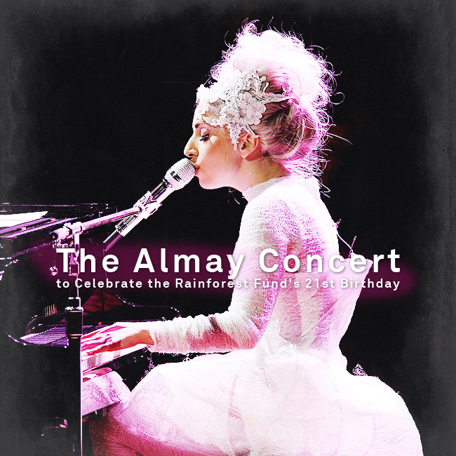 almay-concert.jpg