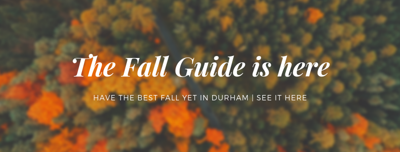 The-Fall-Guide-is-here