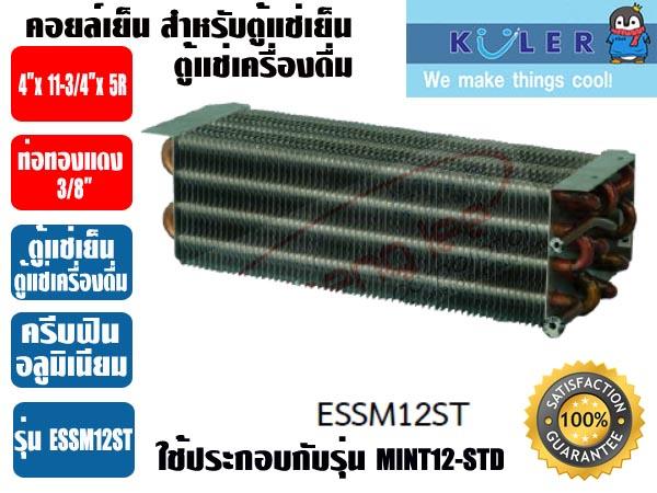 ESSM12-ST-copy