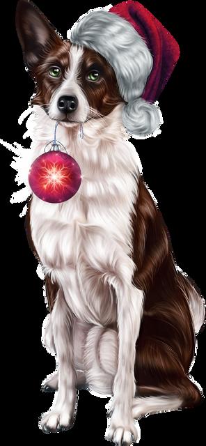 Christmas-Doggy-1