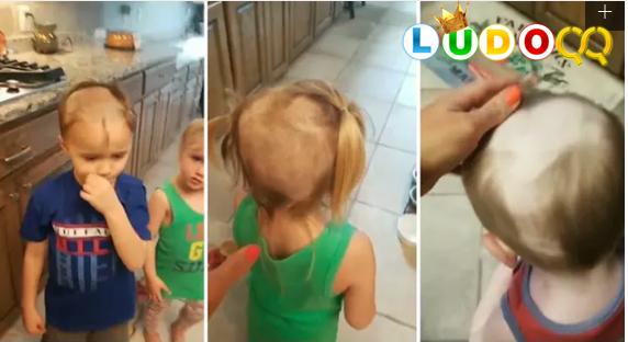 Viral, Aksi Bocah Menggemaskan Cukur Rambut Kedua Adiknya hingga Botak