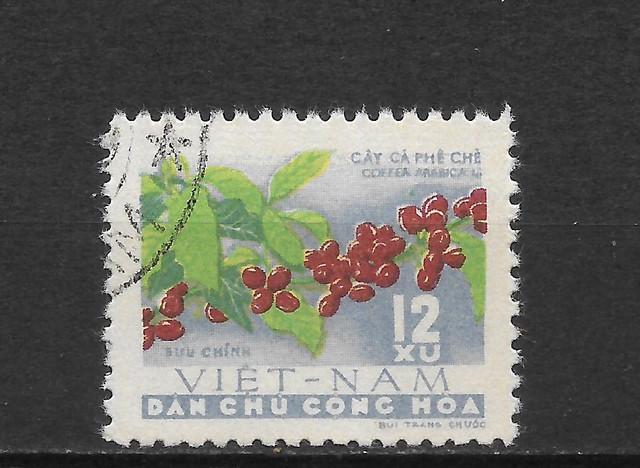Kaffee-Nord-Vietnam-198