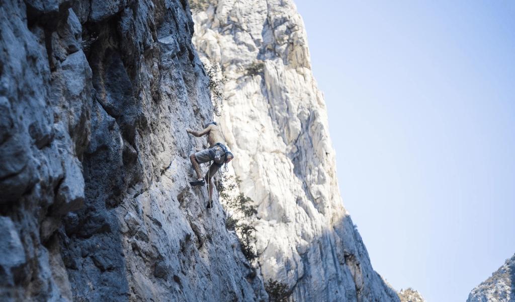 World Climbing Championships