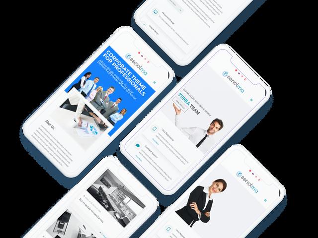 senolma-responsive-mobile-info