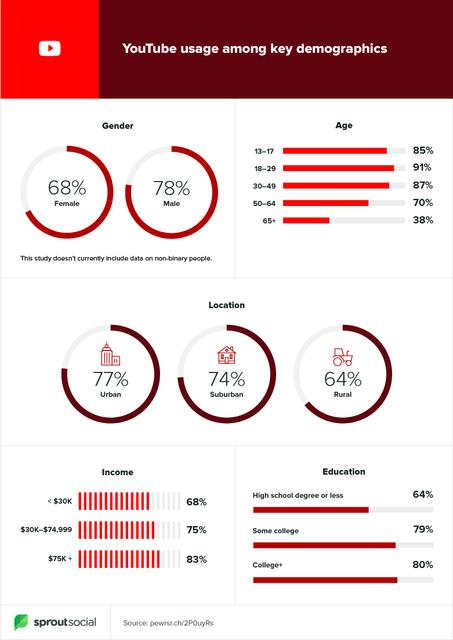 YouTube User Demographics