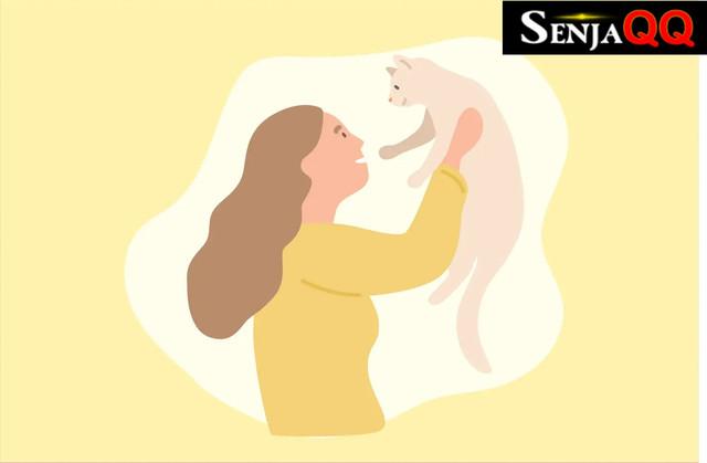 Kucing Memiliki Kulit Sensitif, Ini Cara Tepat Merawatnya
