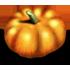 https://i.ibb.co/WPfhQR2/pumpkin.png
