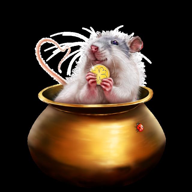 leprechaun-rat-11.png