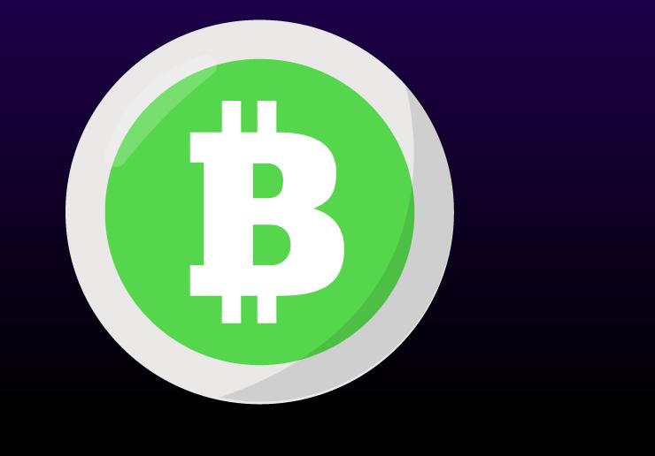 Bitcoin Cash Coin crypto