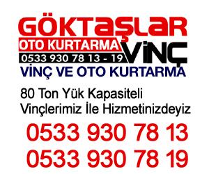 GOKTASLARV-NC-300-X250