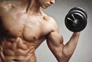 Ofertas en Musculacion