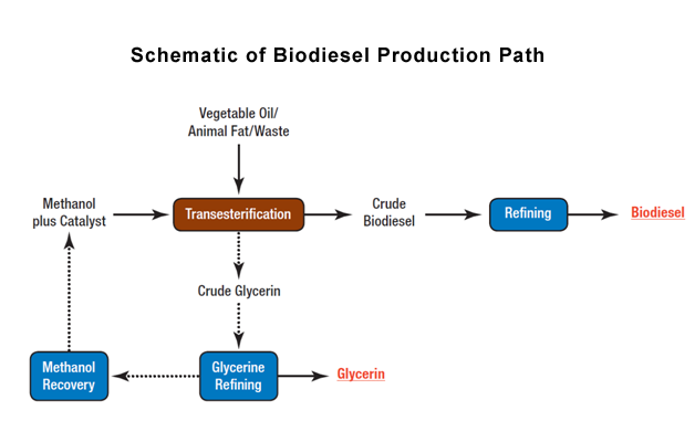 Biodiesel-production-schematic-f282d90a.